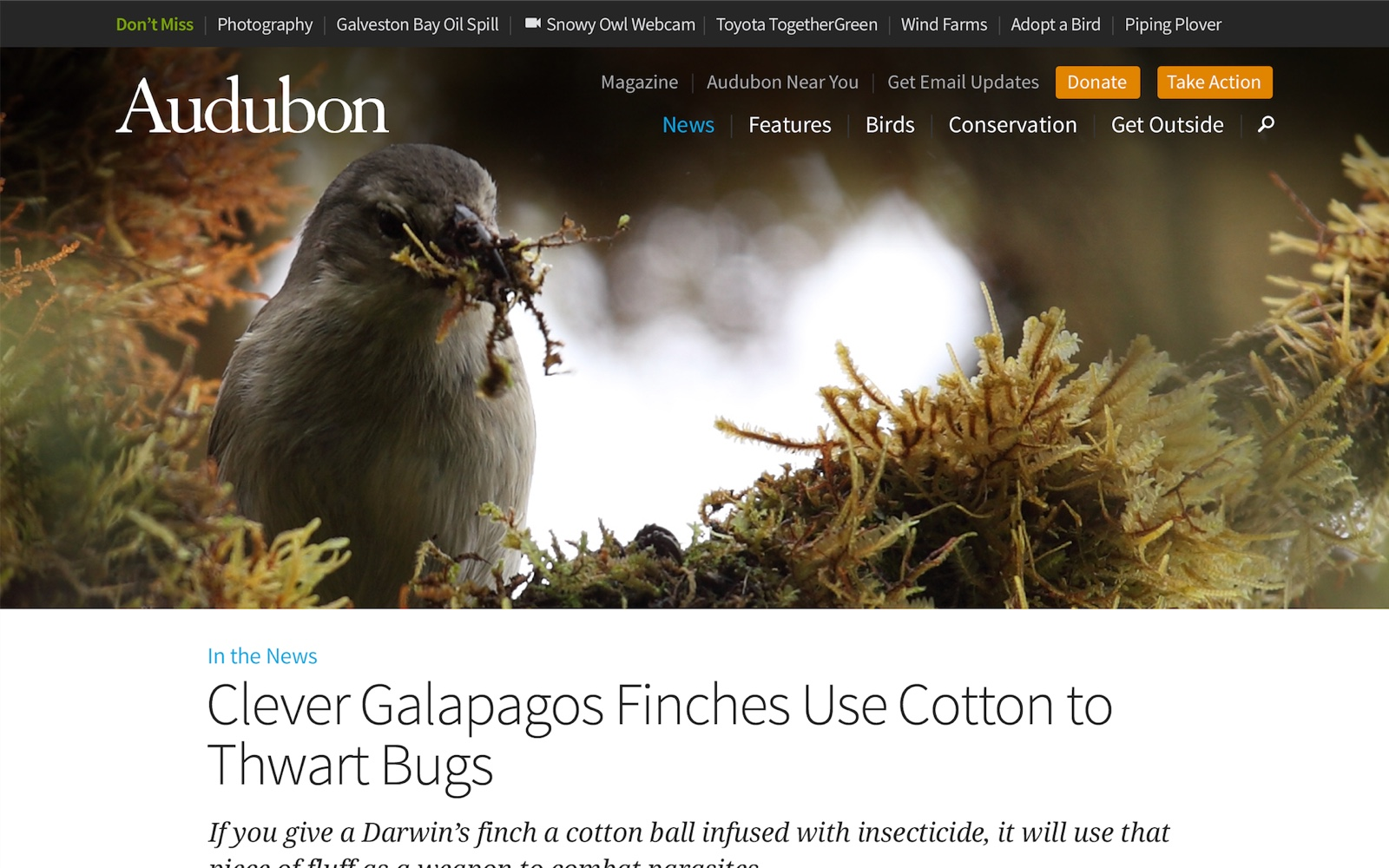 An example of an article template from the Audubon website